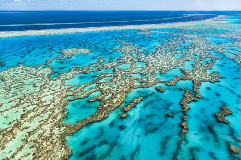 Séjour linguistique Australie, Cairns - Great Barrier Reef