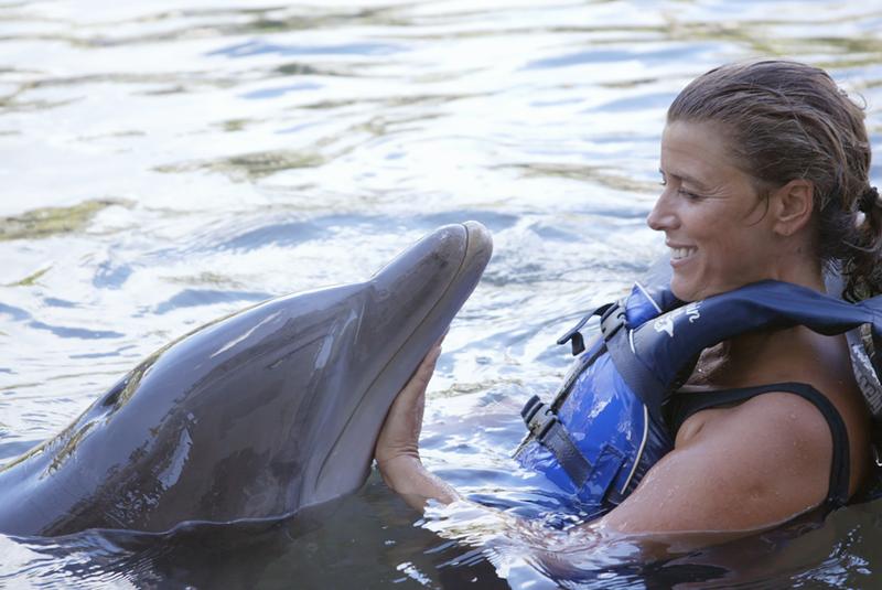 Sprachaufenthalt USA, Hawaii - Honolulu - Global Village Hawaii - Schwimmen mit Delfinen