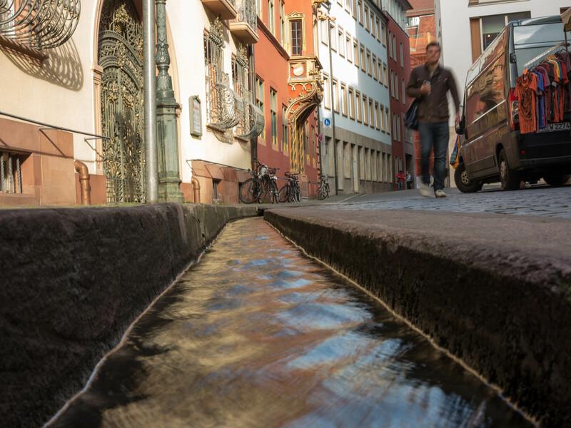Séjour linguistique Allemand, Firbourg-en-Brisgau - Cours d'eau Freiburg