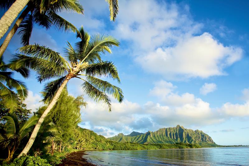 Séjour linguistique États-Unis, Hawaii - Paysage