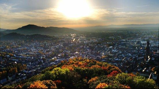 Sprachaufenthalt Deutschland, Freiburg im Breisgau - Stadtsicht
