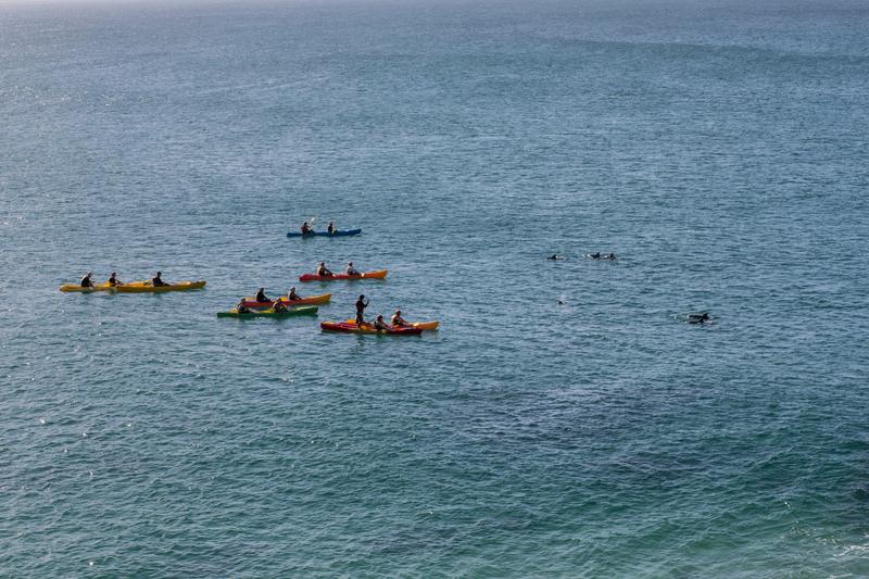 Séjour linguistique Australie, Byron Bay - Kayak