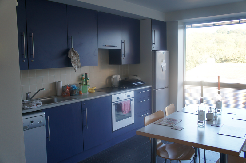 Sprachaufenthalt Irland, Cork - ACET - Accommodation - Apartment - Victoria Mills - Küche