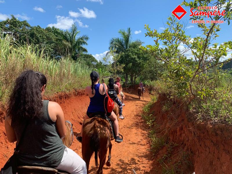 Séjour linguistique Cuba, Havanna – Estudio Sampere Havanna – Temps libre