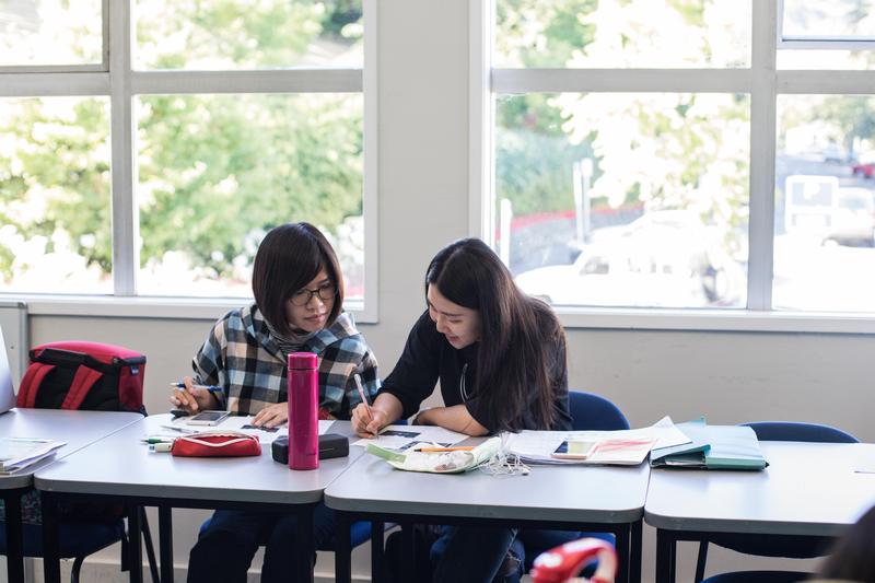 Séjour linguistique Nouvelle Zélande, Nelson - Nelson English Centre - Leçons