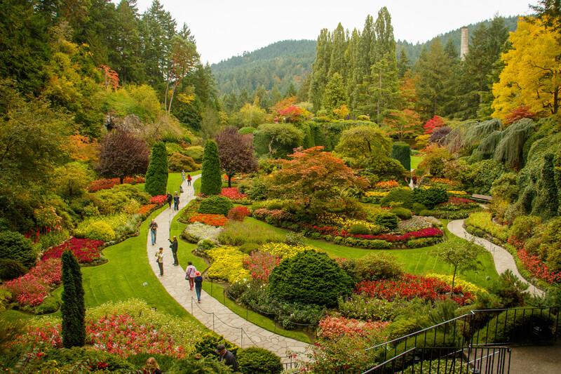 Sprachaufenthalt Kanada, Vancouver Island - Botanischer Garten