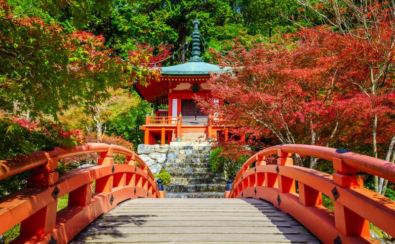 Séjour linguistique Japon, Kyoto - Temple