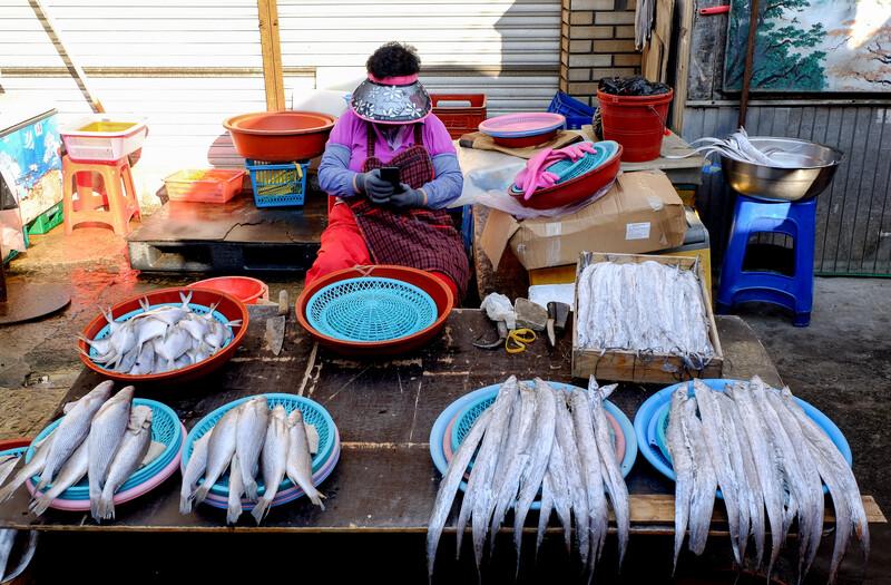 Jagalchi Fish Market, Busan South Korea 3 November 2017 :Jagalchi Fish Market is a representative fish market and a tourist destination in Busan. Many
