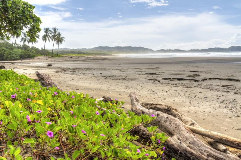 Séjour linguistique Costa Rica, Nosara - Plage