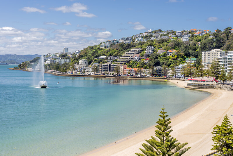 Séjour linguistique Nouvelle Zélande - Wellington - Plage