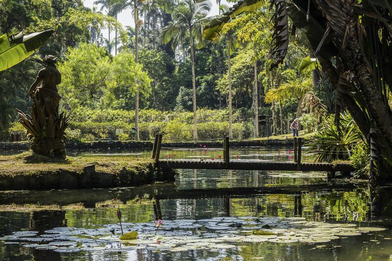 Sprachaufenthalt Brasilien, Rio de Janeiro - Botanischer Garten