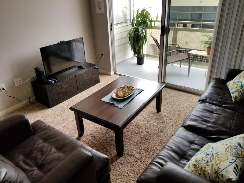 Sprachaufenthalt USA, Santa Monica - CEL Santa Monica - Accommodation - Shared Apartment Classic - Wohnzimmer