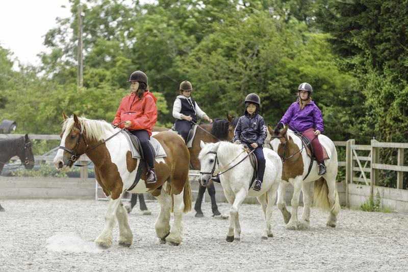 Séjour linguistique Angleterre, Brighton - EC Brighton Young Learners - Equitation