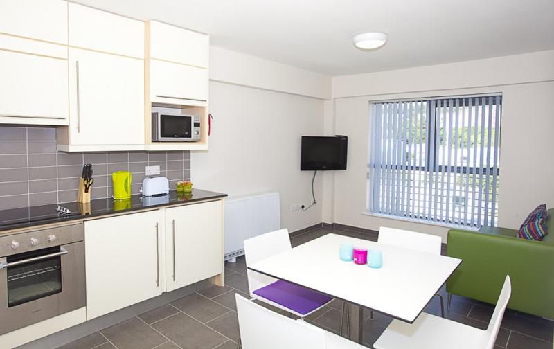 Sprachaufenthalt Irland, Cork - ACET - Accommodation - Apartment - Victoria Lodge - Küche