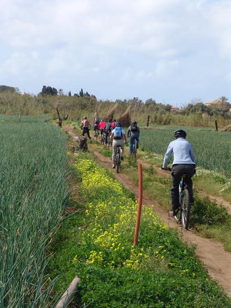 Séjour linguistique Italie, Tropea - Piccola Università Italiana Tropea - Tour de vélo