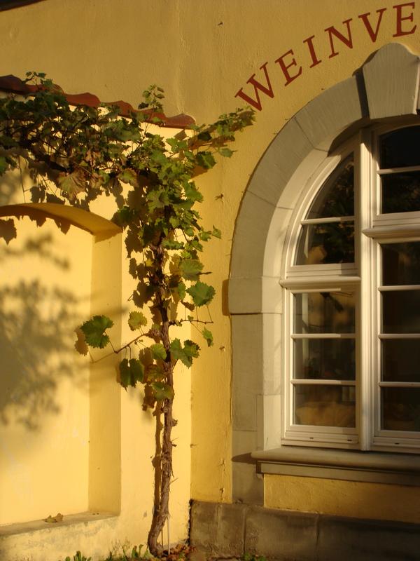 Sprachaufenthalt Deutschland - Meersburg - Meersburg Academy